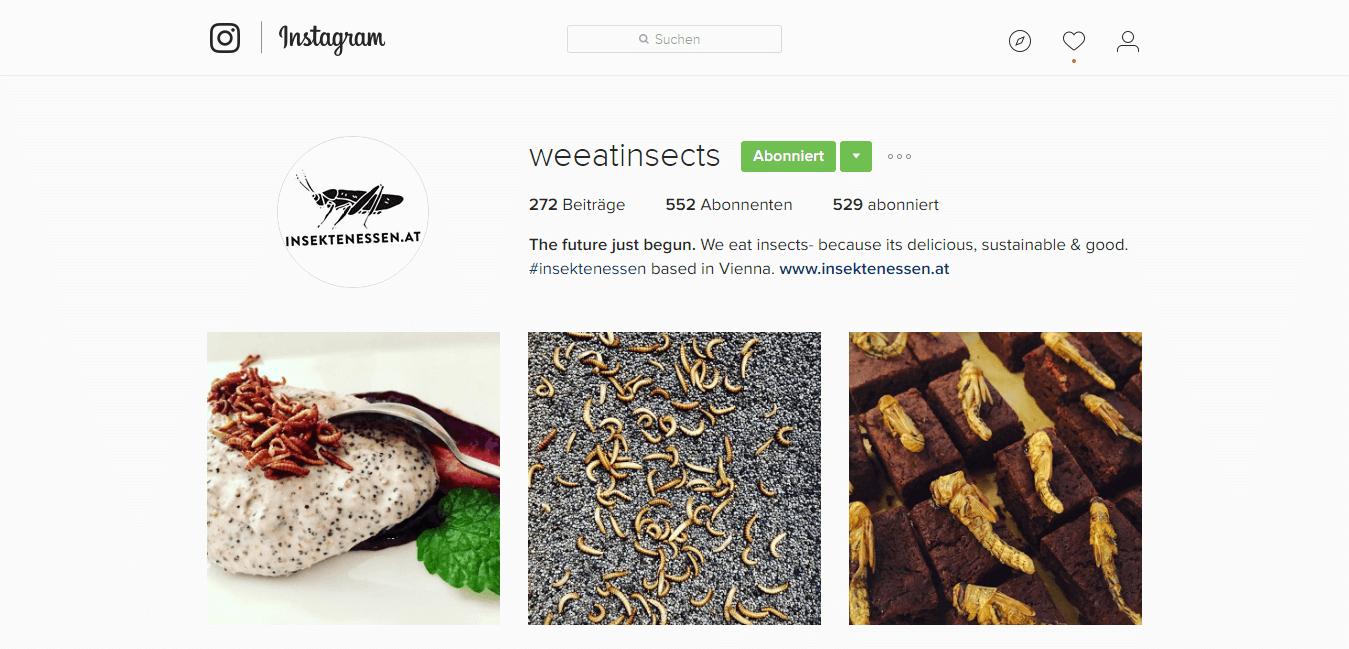 InsektenEssen Instagram